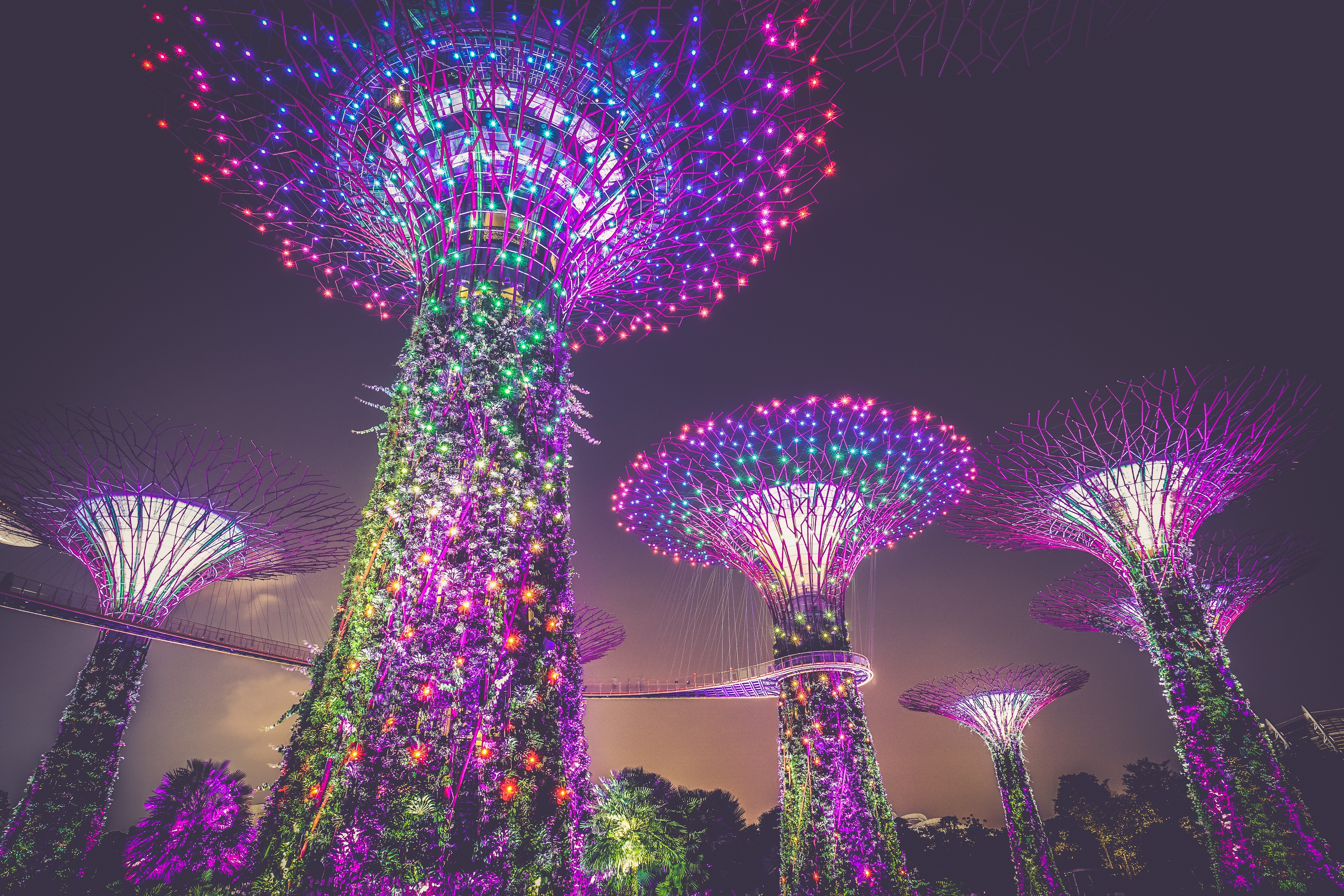 Singapore Landscape05.jpg